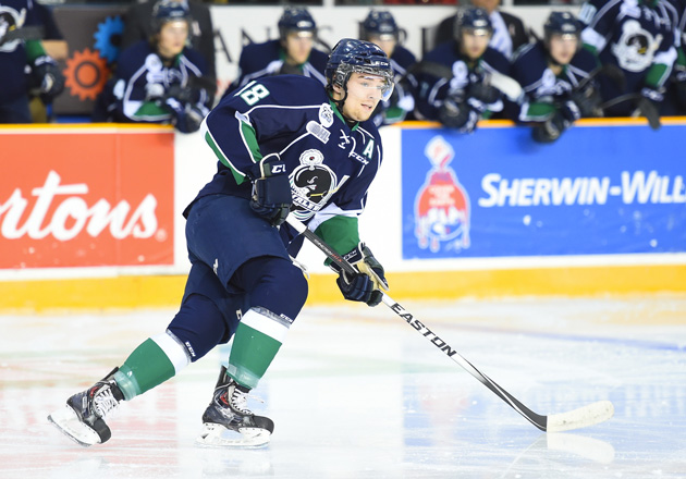 Danny Vanderwiel - Plymouth Whalers - OHL