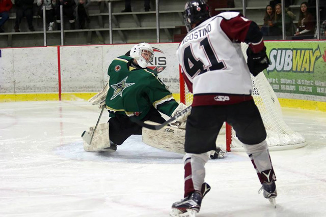 Brenden D'Agostino Chatham Maroons