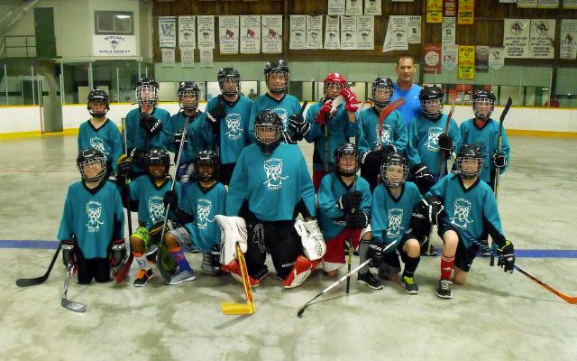 Chatham Ball Hockey League