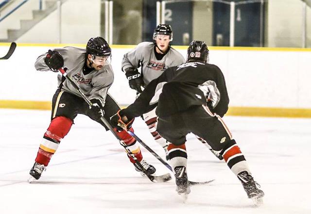 TJ Brodie Hockey