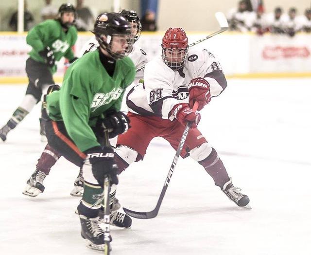 Deni Goure hockey