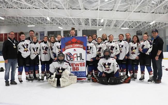 Lower Lakes Female Hockey League