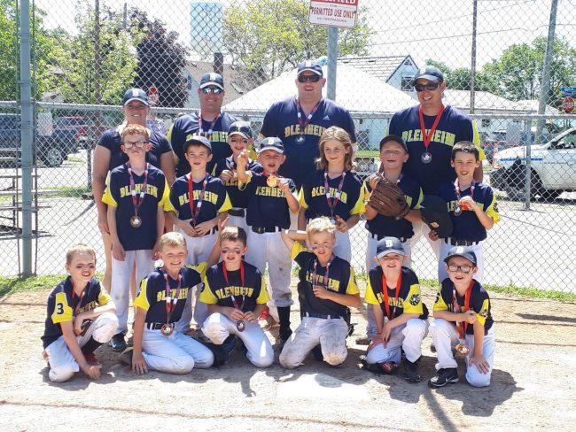 Blenheim Bees baseball