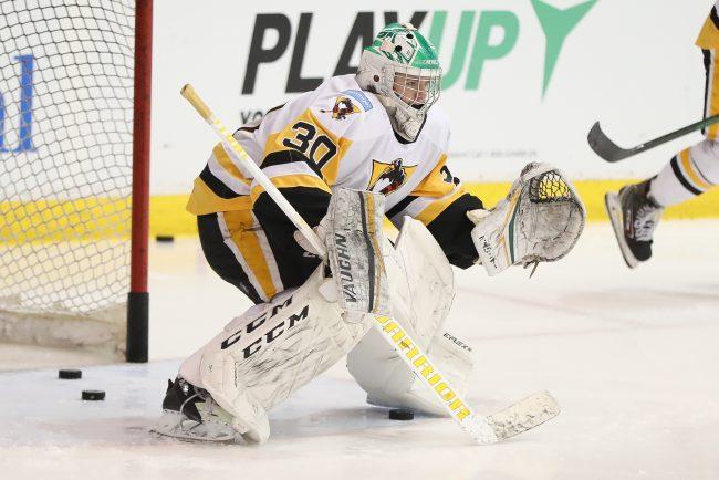 Brett Brochu AHL